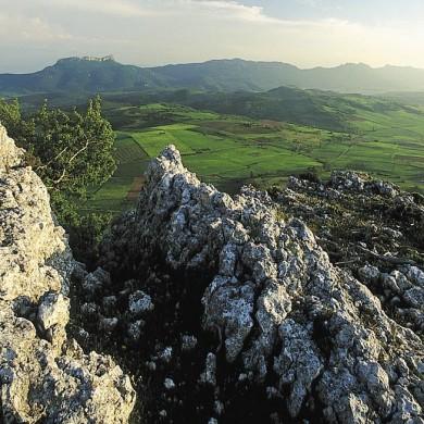 Peña del Castillo. Casillako muinoa. DFA